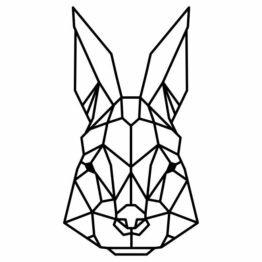 królik geometryczny
